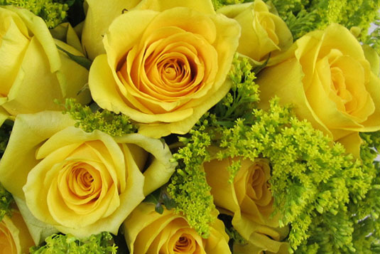 Tish Long Wedding Flowers - Yellow/Green